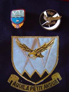 31 & 15 Squadron Badges